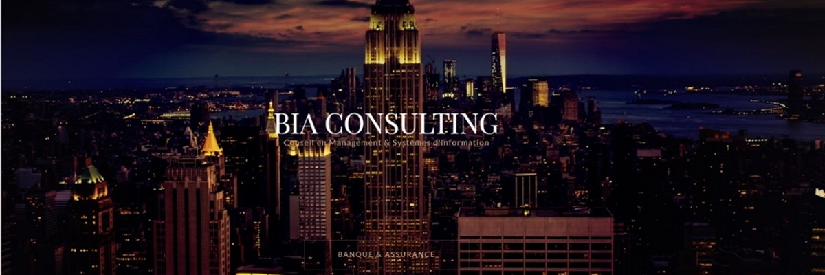 BIA Consulting
