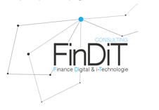 FINDIT CONSULTING logo