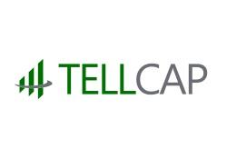 Telligent Capital Management logo