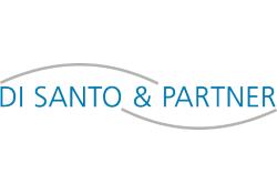 Di Santo & Partner GmbH logo