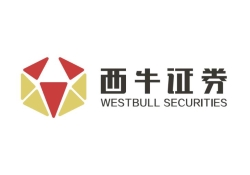 West Bull Securities Limited logo