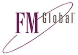FM Insurance Europe S.A. logo
