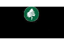 Grüner Fisher Investments GmbH logo