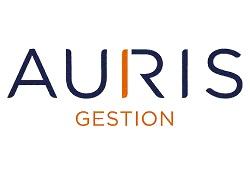 Auris Gestion logo