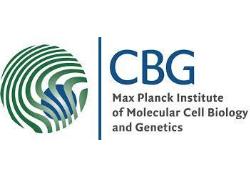 Max-Planck-Institut für molekulare Zellbiologie und Genetik logo