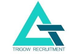 Trigow Recruitment logo