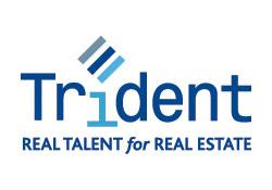 Trident International Associates logo